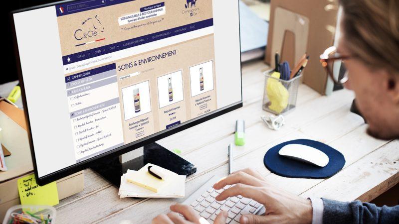 Création de boutique en ligne administrable à Lannion
